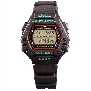 Casio Mens Classic DW290-1V Watch