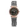 Skagen Womens Steel 108SRM Watch