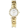 Skagen Womens Steel 109SGGX Watch