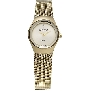 Skagen Womens Diamond 432SGSG Watch