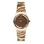 Skagen Womens Diamond 432SRRD Watch
