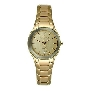 Skagen Womens Diamond 822SGXG Watch